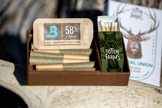 5 Common Questions About Boveda for Medical Cannabis