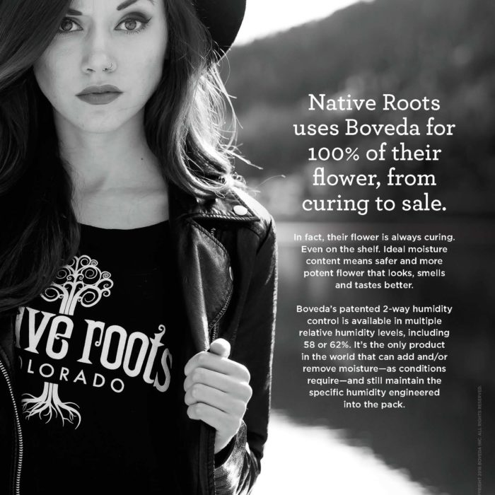 Native Roots Packaging Cannabis with Boveda