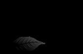 tabacalera palma logo