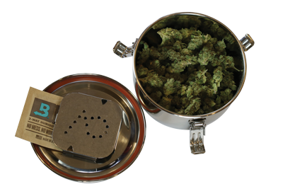 Curing Cannabis with Boveda in a Cvault