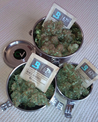 Cannabis Treated by Boveda