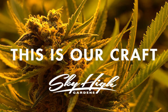 This is Our Craft | Sky High Gardens