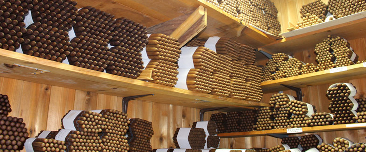 Half wheels of cigars in the aging room.