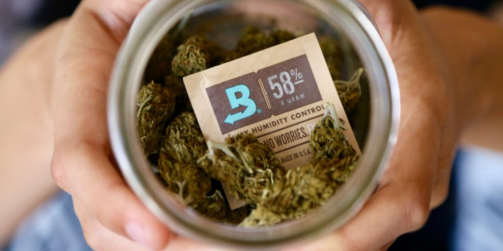 Boveda in a glass jar with cannabis.