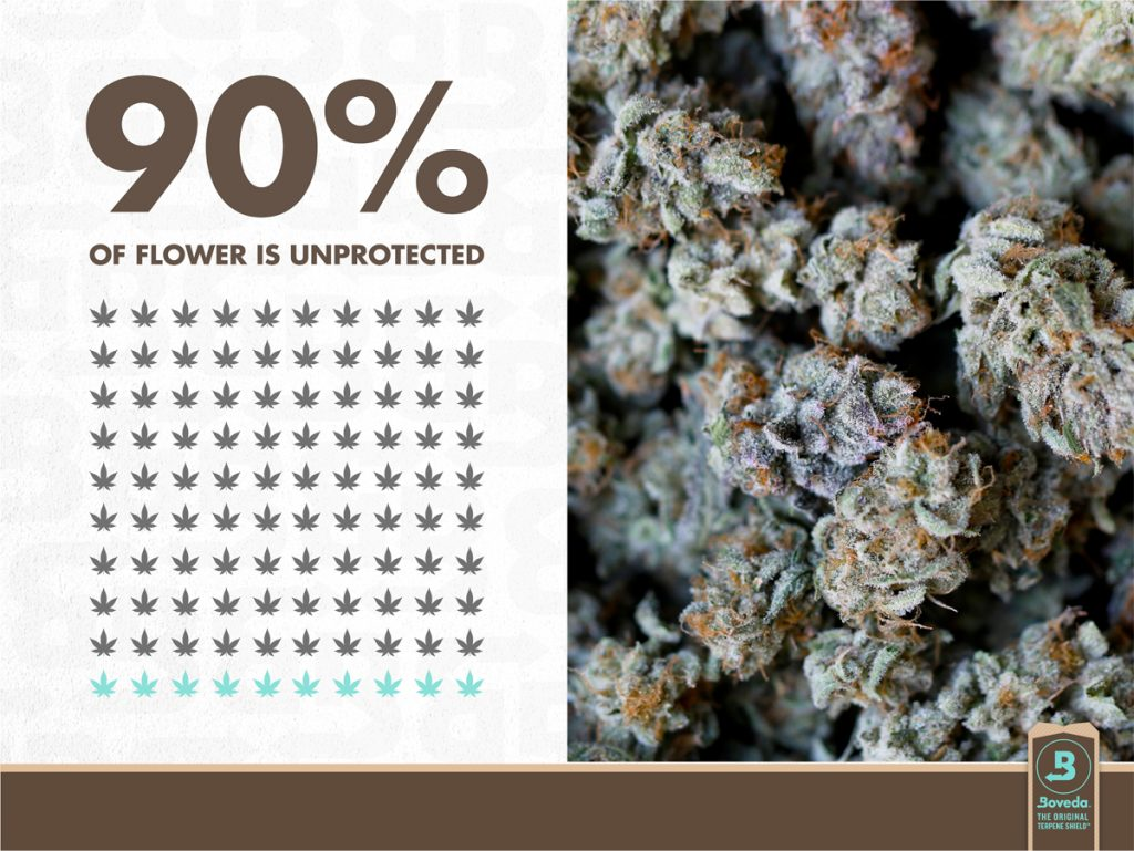 Cannabis needs a Boveda humidity pack to save terpenes and protect cannabis from drying out.
