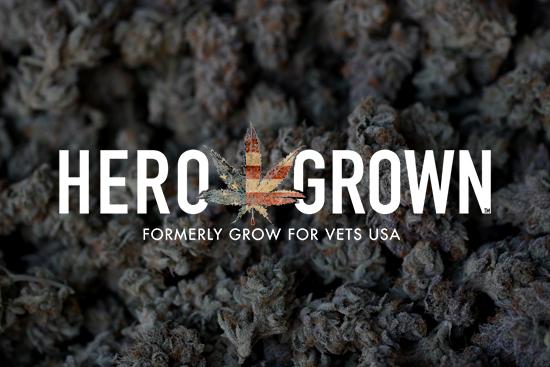 Flower & Fitness vs Opioids & Dependency: A Marine's Fight
