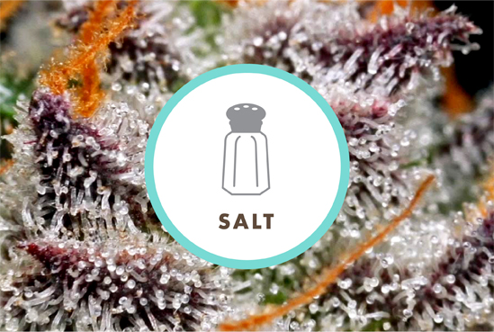 Why Salt is Better in Humidity Control for Cannabis Storage