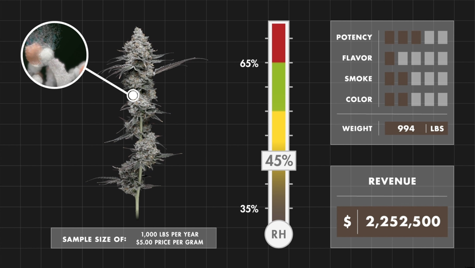 Cannabis stored at 45% RH. Even within that optimal RH range where cannabis flower realizes its full potential, there are still tens of thousands of dollars to be gained from precisely maintained RH. Additionally, cannabis in the optimal humidity range maximizes all the qualities that attract and retain customers.