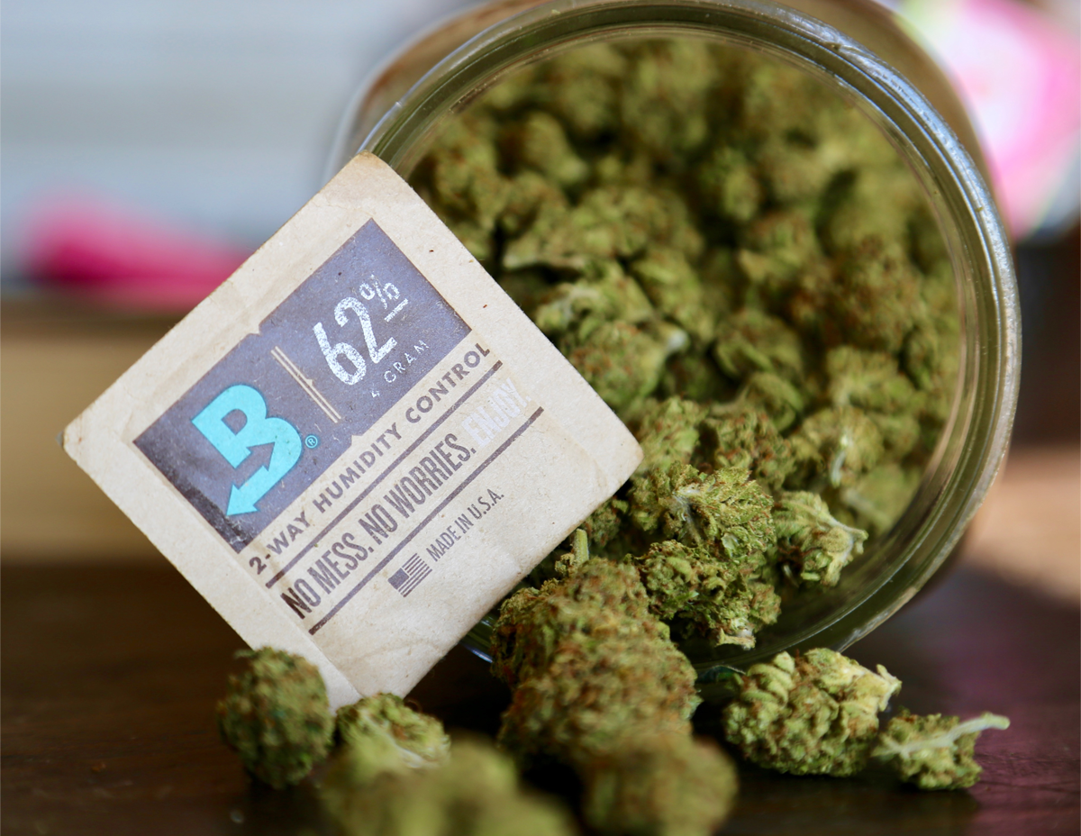 100 cannabis consumers and counting have taken the Boveda Challenge to prove to themselves how much better bud is with Boveda, the original terpene shield. #Savetheterps