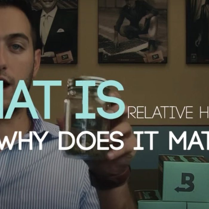 What is relative humidity and why does it matter?