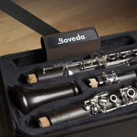 Boveda with clarinet