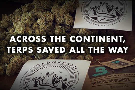Why Boveda Entered the Fight Against Opioid Abuse