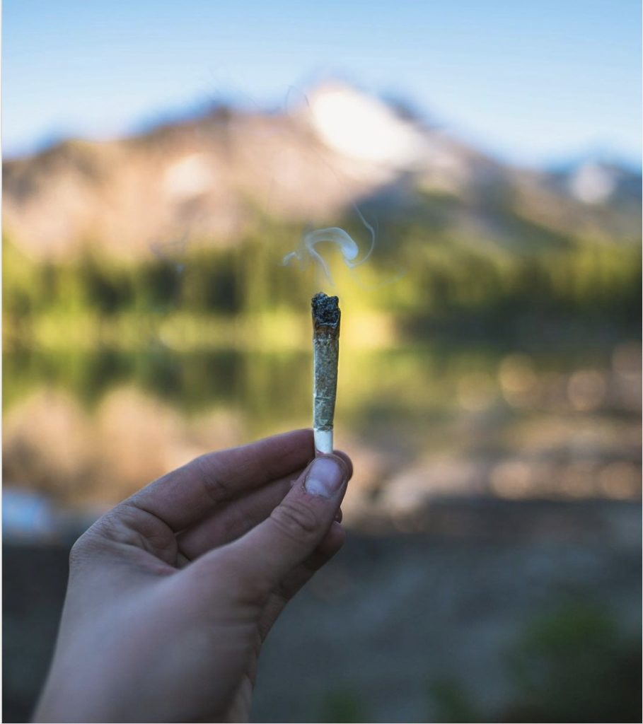 Totem Farms joints are protected by Boveda humidity packs.