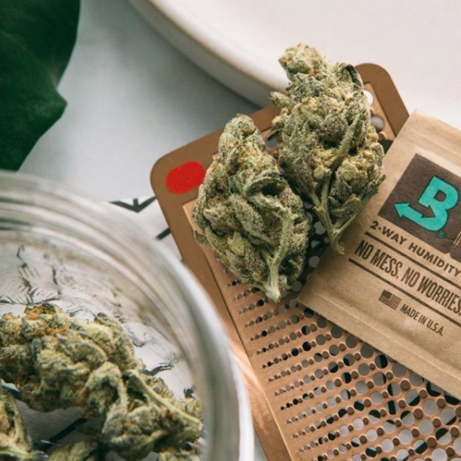 boveda and cannabis