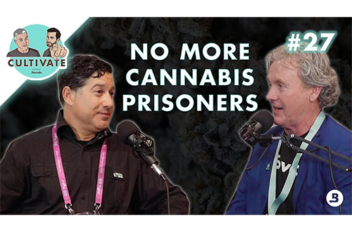 No More Cannabis Prisoners Feat Harvest Health & LPP | Ep. 27