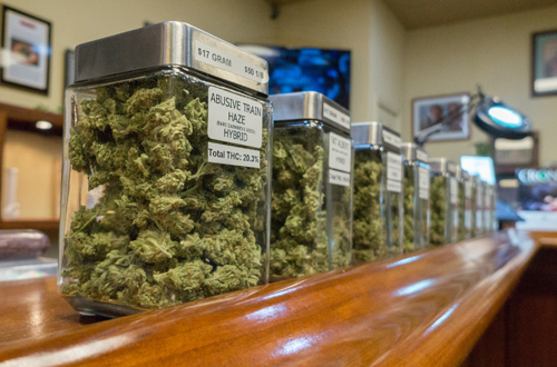 Is Your Dispensary Curing on the Shelf?